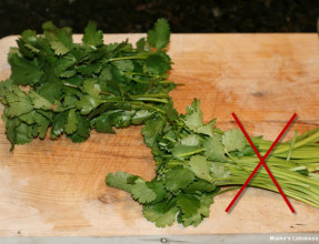 Discard Cilantro Stems Then Chop Leaves