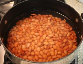 Boiled Fasoulia - Pinto Beans
