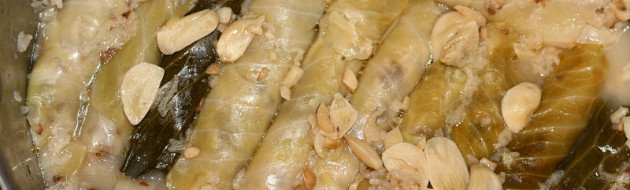 Freshly Cooked Stuffed Cabbage Leaves