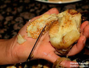 Discard Eggplant Seeds